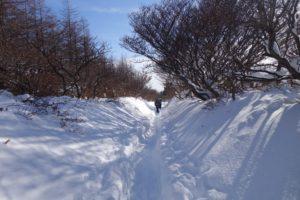 安達太良山へと進む道